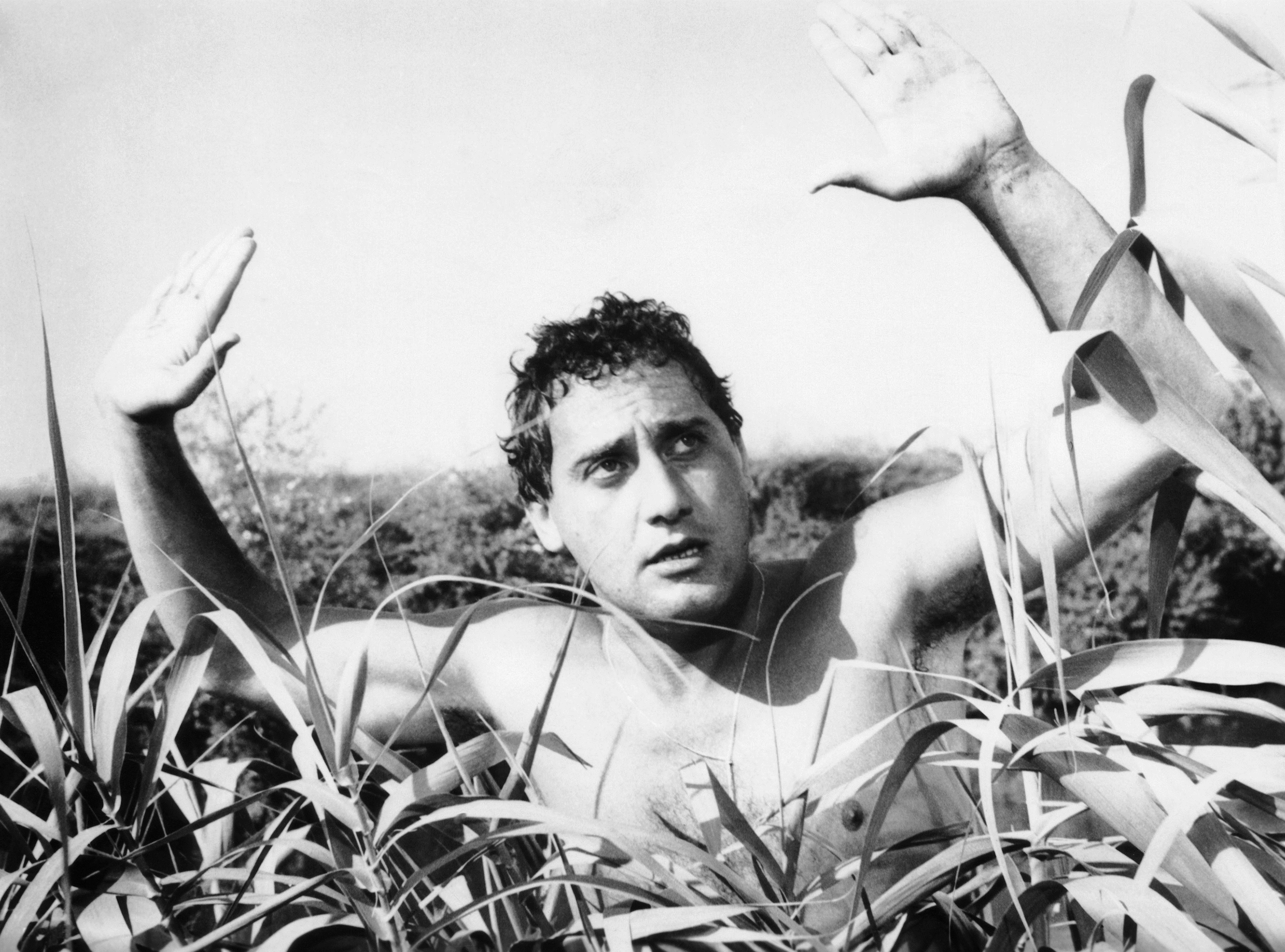 Alberto Sordi. La vita, i film - Cinema - Rai Cultura