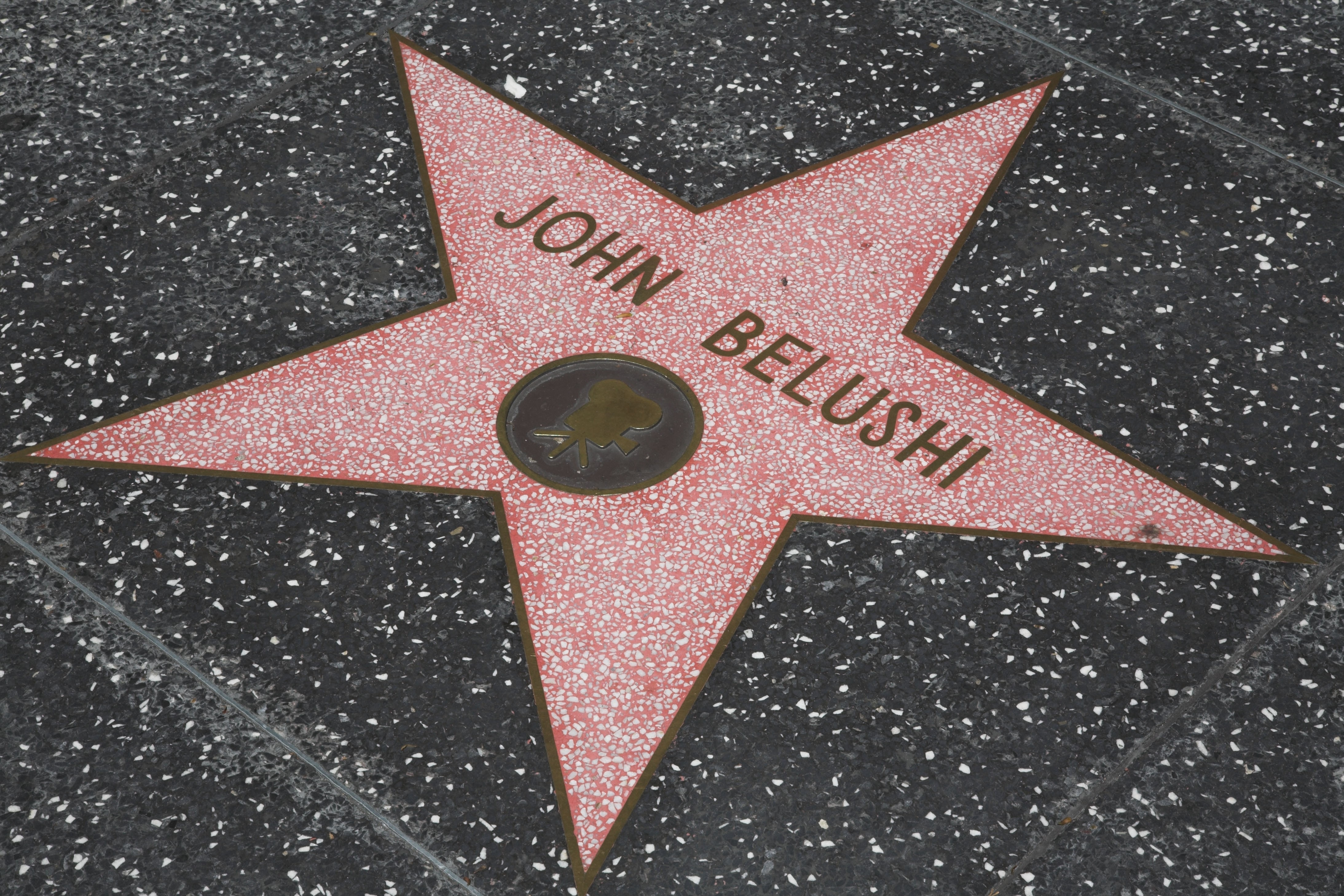 1565337865084_Hollywood.jpg - Hollywood Boulevard, Walk of fame